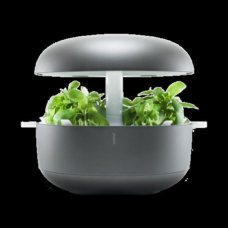 Kuchyňská zahrádka Plantui6 - šedá